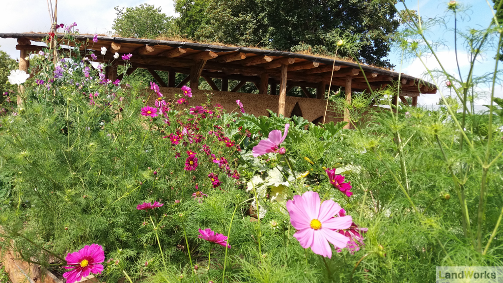 LandWorks Charity Devon: Cob Wall and Flowers